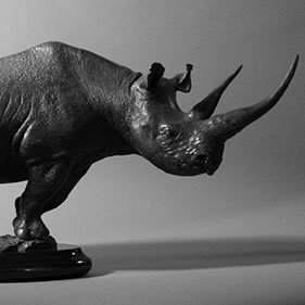 BLACK RHINO - RAGING BULL<br />click to enlarge
